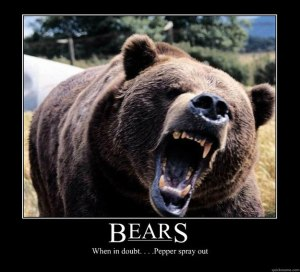 Bear spray?!